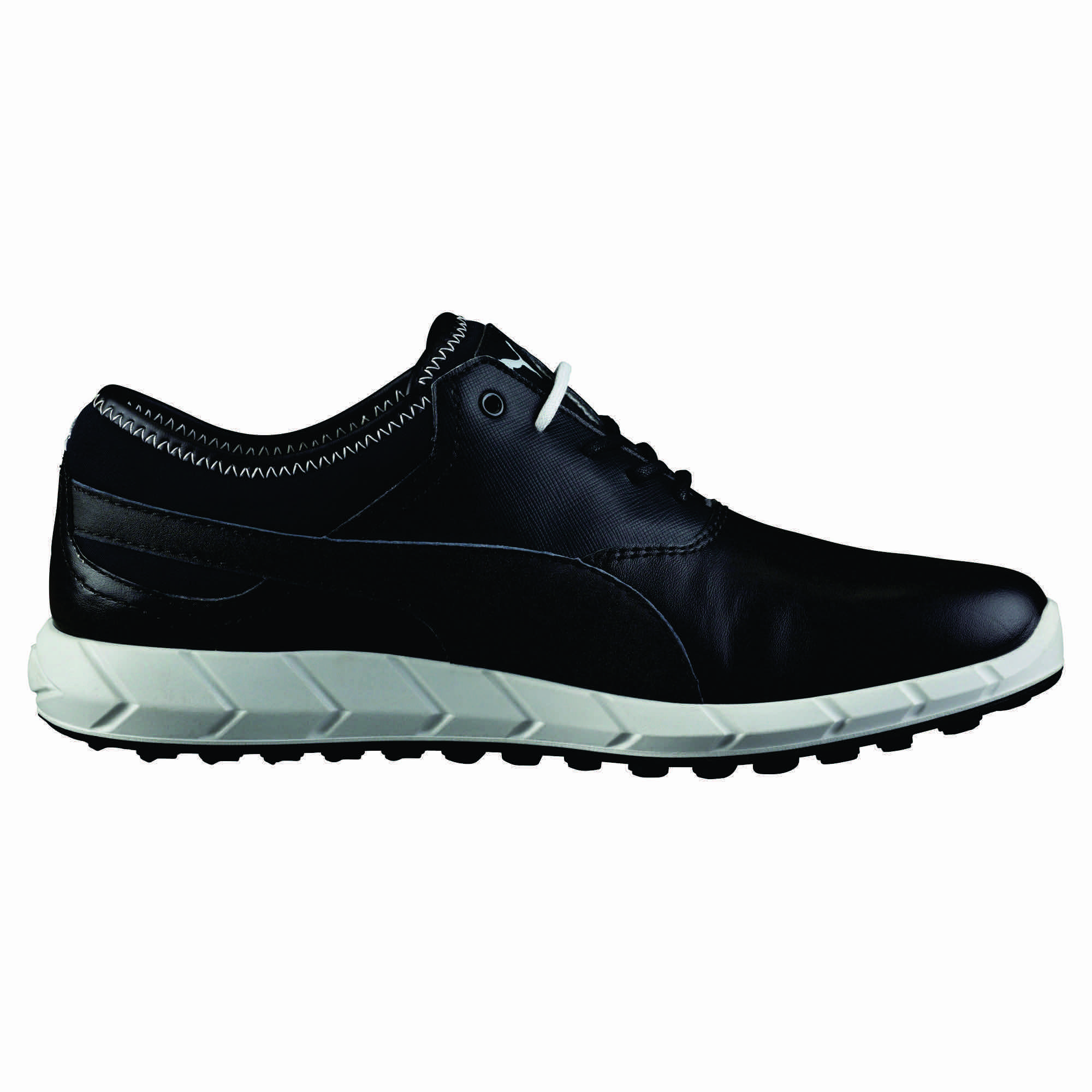 The Brand New Puma Ignite Spikeless Golf shoes