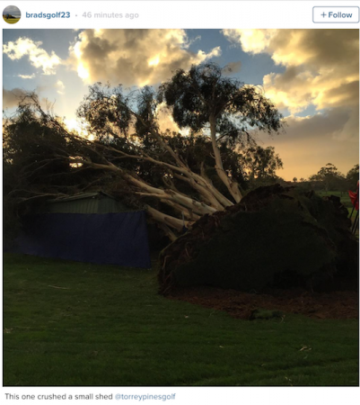 Torrey Pines storm