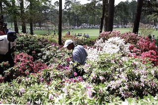 The Masters: Betting Tips