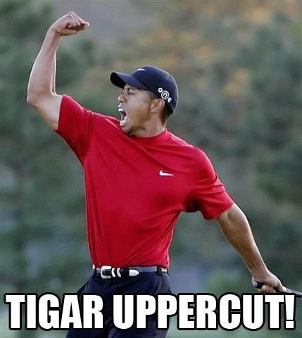 Check Out Tiger's Swing