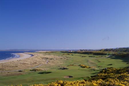 Battle for grazing rights at Royal Dornoch