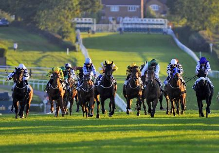 Horse racing & golf