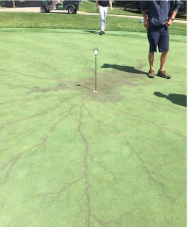 Lightening strikes Iowa golf club