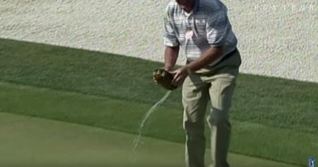 Top 10 Animal Interventions on the PGA Tour