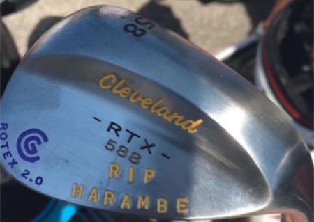 Smylie's New Wedge