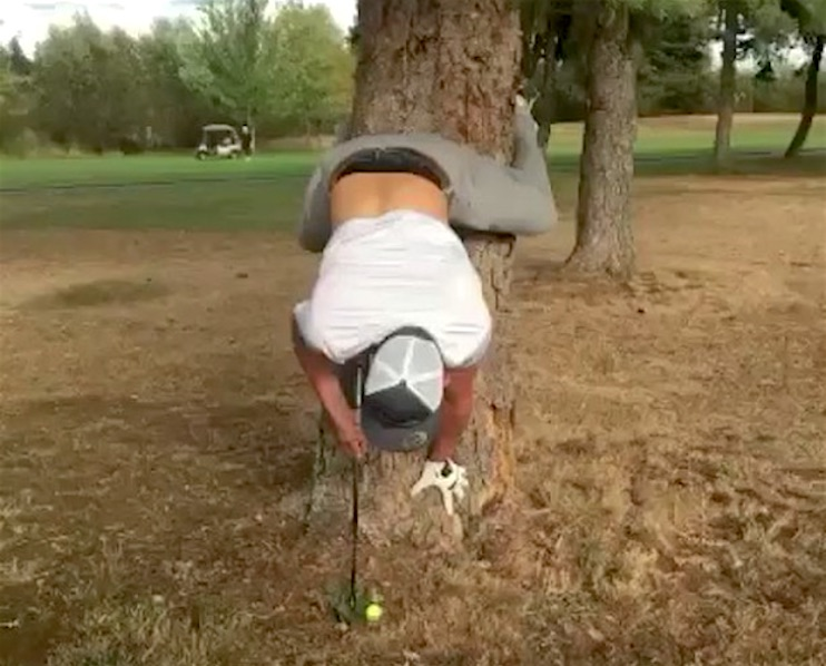You've never seen a hole in one like this before...