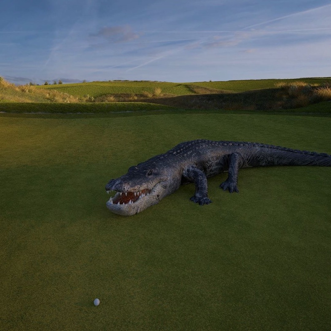 What's this alligator doing on the green?