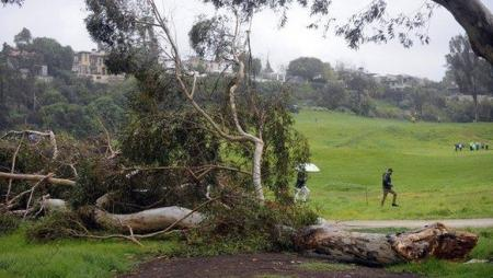 Storms cause havoc at Riviera
