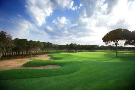 Montgomerie Maxx Royal