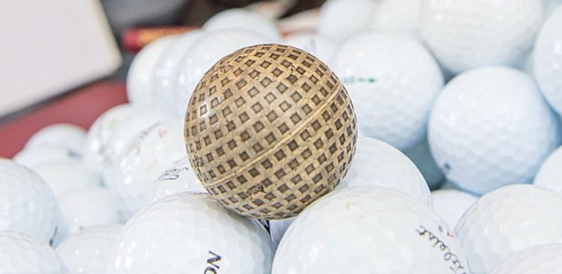 Collie finds 51,000 golf balls