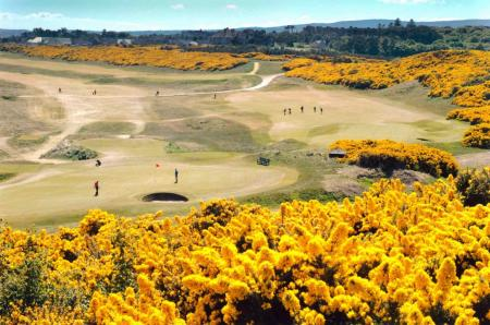 Changes at Royal Dornoch