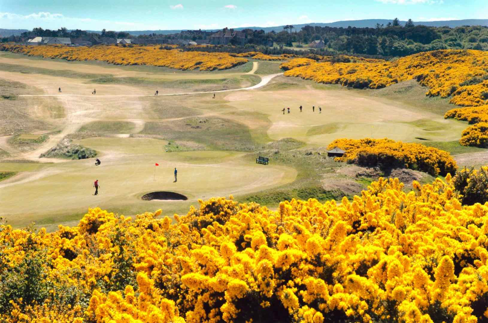 Royal Dornoch seeks to protect its history