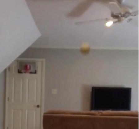 Fan–tastic trick shot