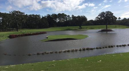 17th hole at Sawgrass battered by Hurricane Irma