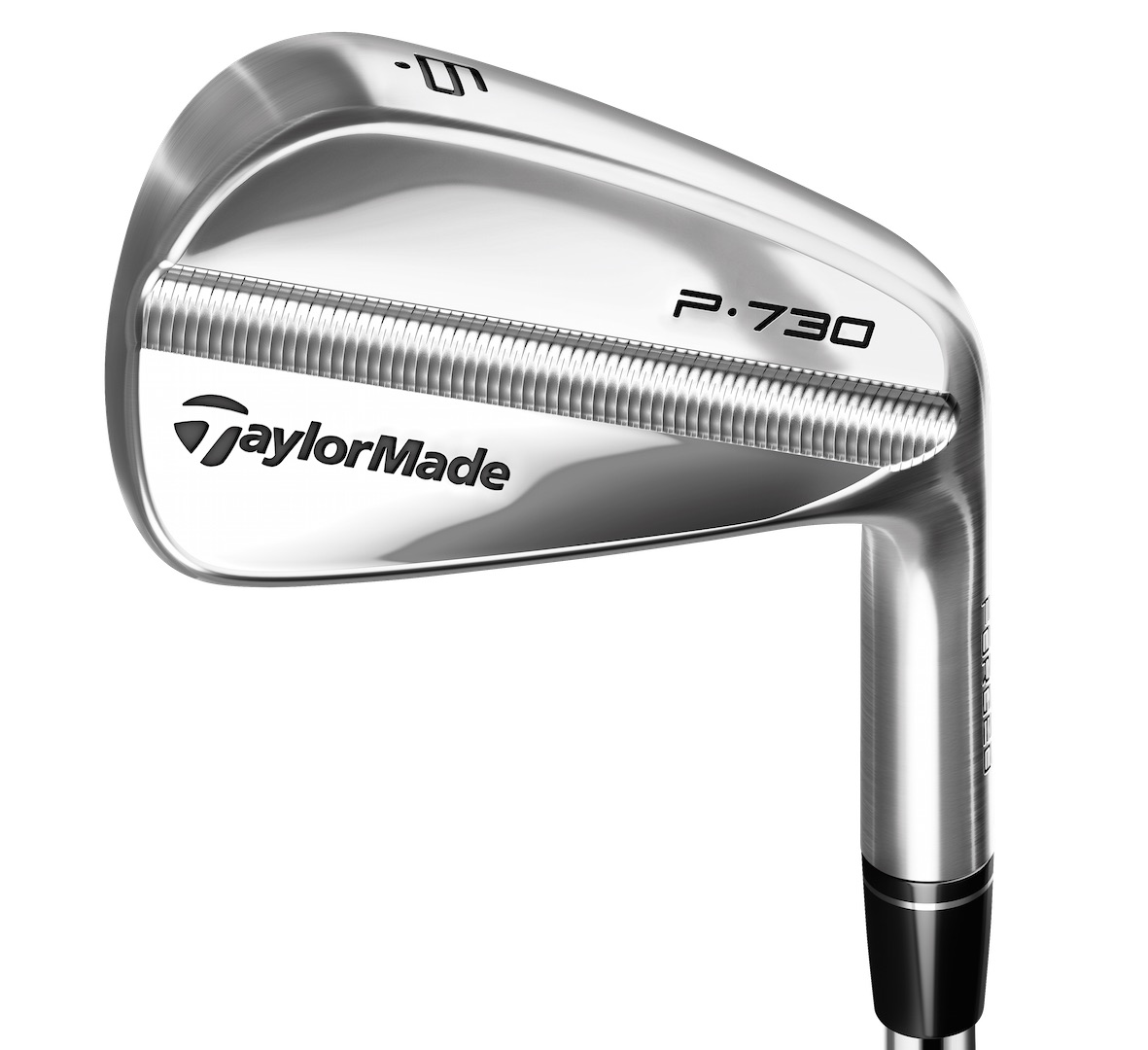 The TaylorMade P730 Irons