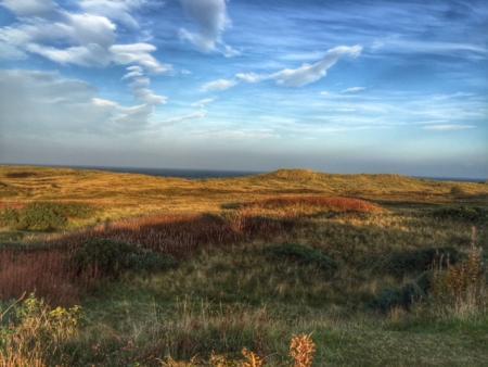 Scottish Nature Heritage response