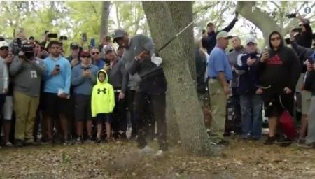 Wowzers – Tiger hitting amazing shots again