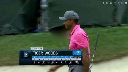 Valspar moving day sees Tiger Woods pounce