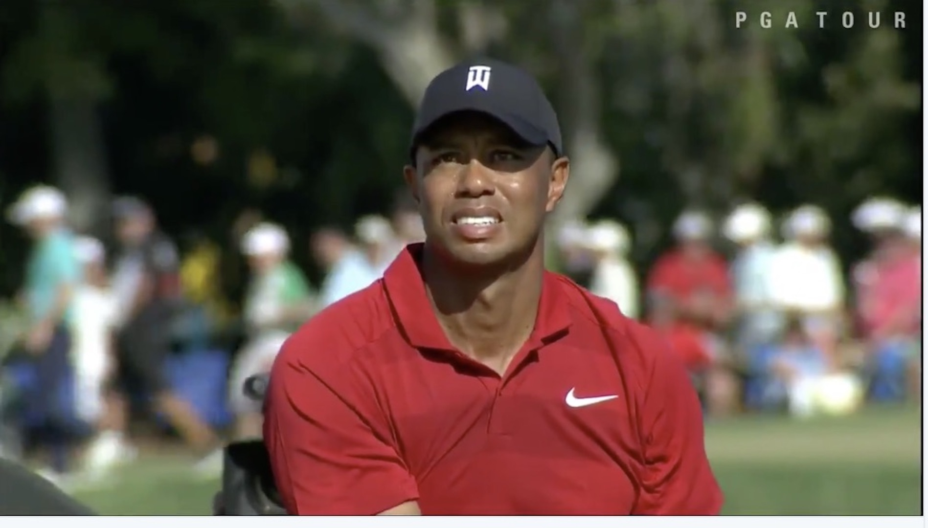 Tiger Woods blows it at Bayhill