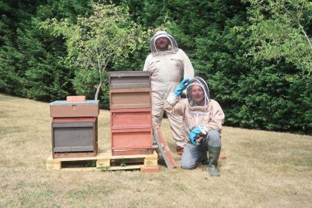 Bees create a buzz at Cranleigh Golf Club