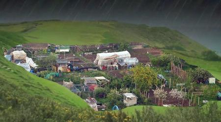 Allotments on golf course