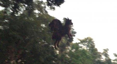 Dark Lord Photographed Flying Over Golf Course