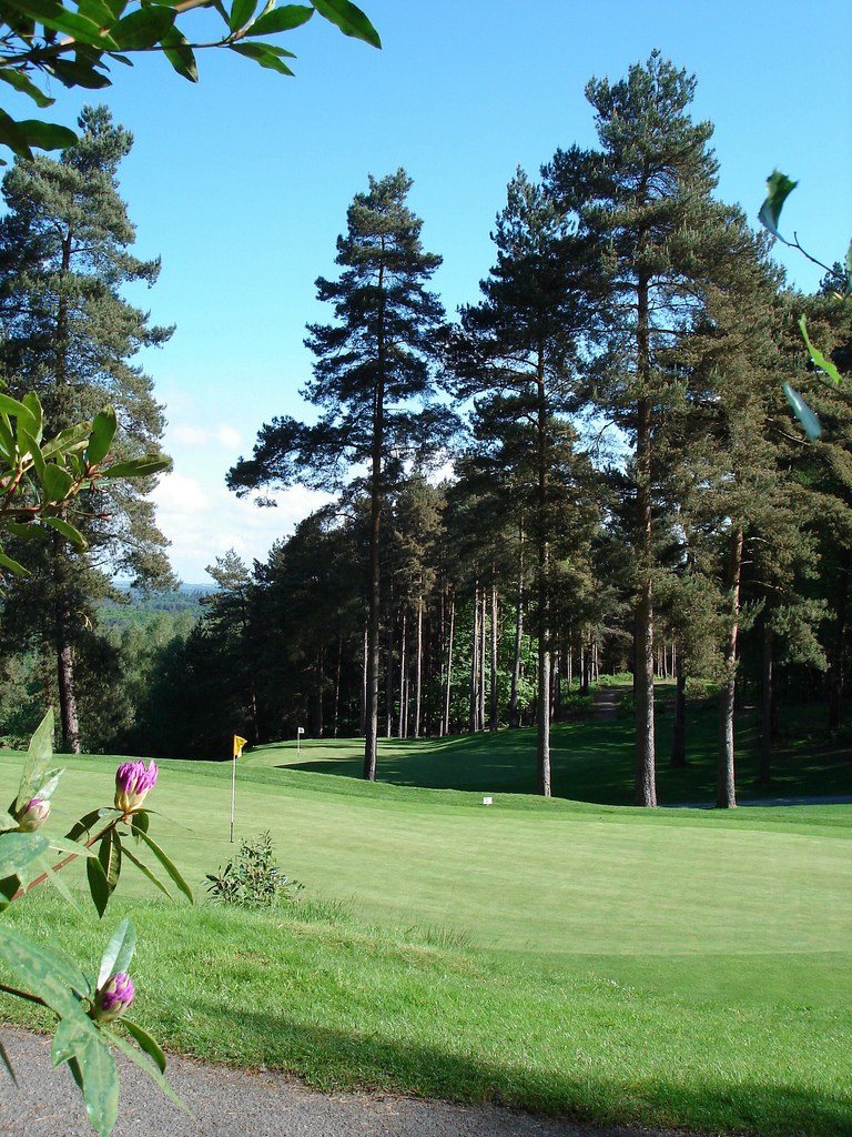 Golf travel – You Little Beauty! Old Thorns
